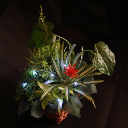 観葉植物寄せ植え×キラリカ ホワイト1本
